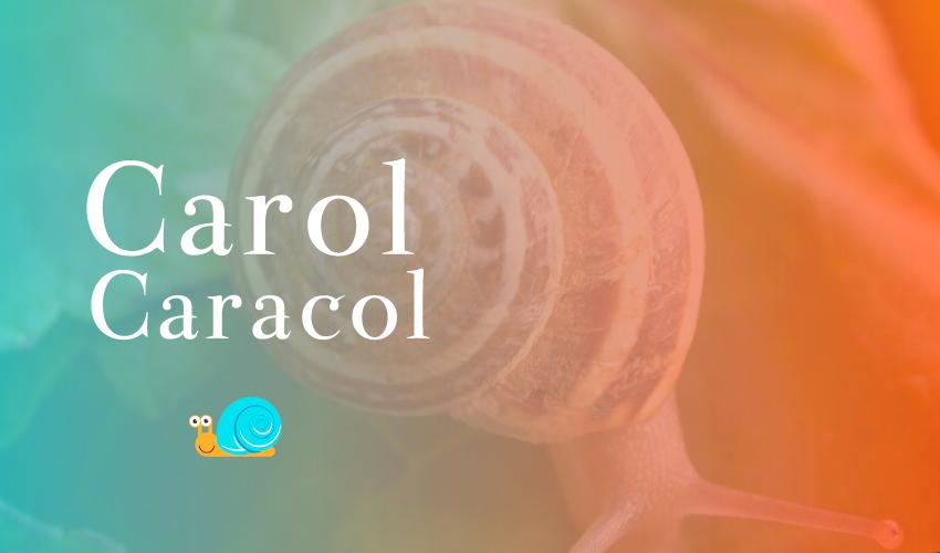 logomarca-carol-caracol