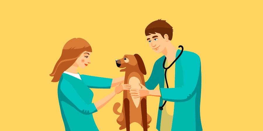 nomes-para-clinica-veterinaria